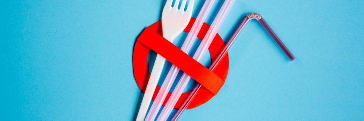 L'utilisation de certains produits plastiques jetables, pour lesquels il existe des alternatives, sera interdite d'ici 2021.
