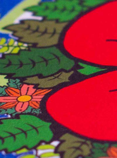 CFP Flex propose une gamme de flex et d'imprimables pour transfert à chaud sur textiles